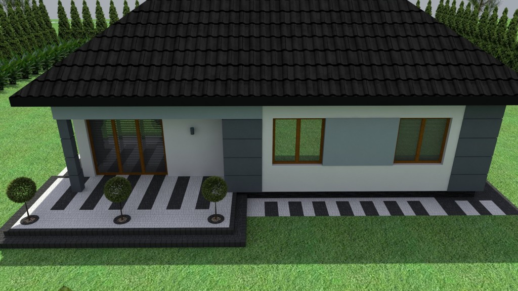 elewacja domu 3d - projekt